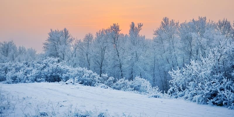 Different-Types-of-Snow-and-Ice