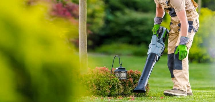 How to Choose A Cordless Leafblower