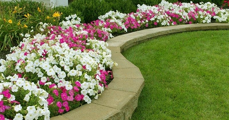 Removing Leaves from Flower Beds During Spring