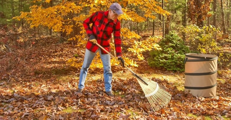 Pros and Cons of Using a Rake