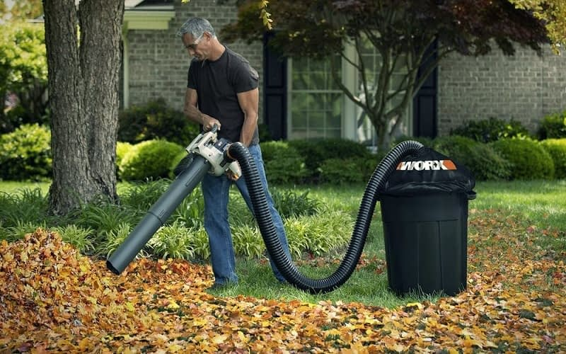 Best-way-to-Pick-Up-Leaves-in-a-Yard