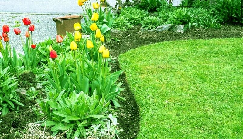How to Use Dead Leaves for Healthy Flowerbeds