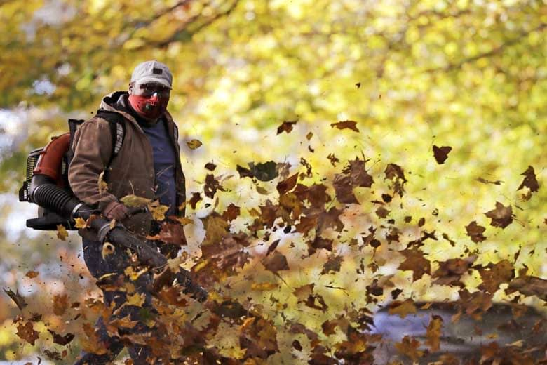 Ultimate Leaf Blower Buying Guide