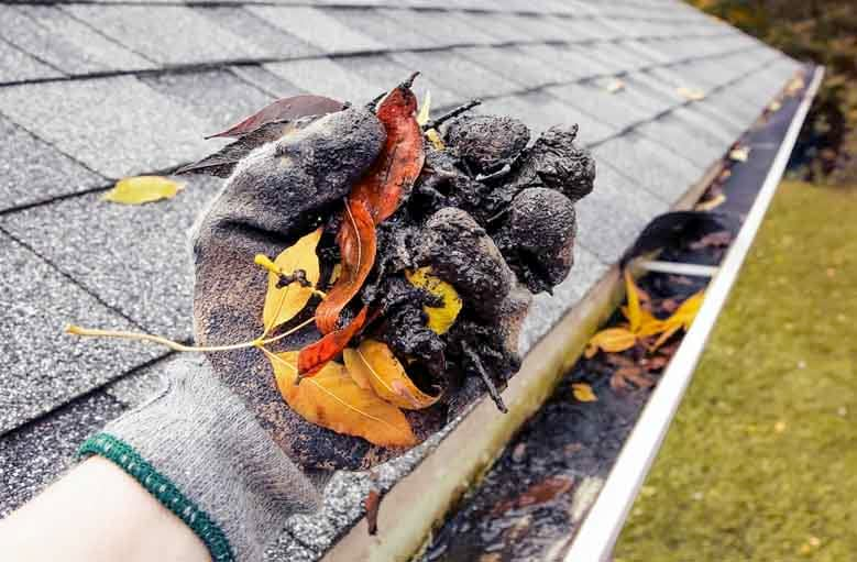 Frequently Asked Questions Cleaning Gutters with a Leaf Blower