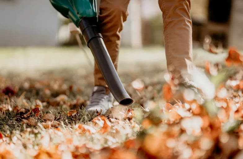 Steps & Tips on How to Use a Leaf Blower