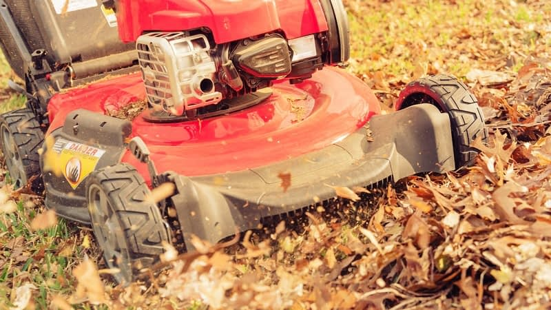 How to Mulch Leaves Into Your Lawn