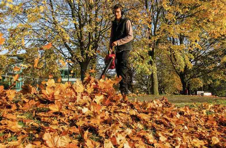 How to Use a Leaf Blower Best